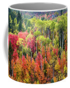 Panoply Of Autumn Color Coffee Mug
