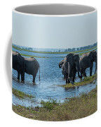 Panorama Of Elephant Herd Drinking From River Coffee Mug
