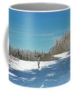 Panorama Of Winter Park Coffee Mug