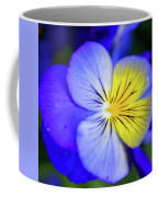 Pansy Close-up Square Coffee Mug