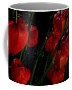 Paper Lantern Plant Coffee Mug