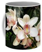 Paradise Perfection Coffee Mug
