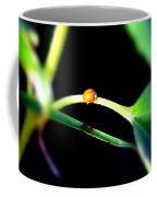 Parallel Paths Coffee Mug