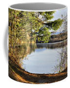 Park And View Coffee Mug