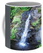 Parker Creek Falls Coffee Mug