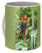 Parrot In Tropical Setting Coffee Mug