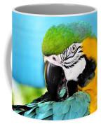 Parrot Time 3 Coffee Mug