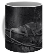 Parson's Chameleon - Unique Prospective Coffee Mug