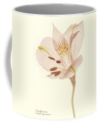 Pasae Alstroemeria By Flower Photographer David Perry Lawrence Coffee Mug