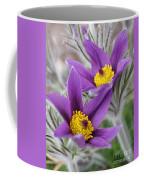 Pasque Flower Friends Coffee Mug