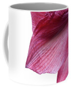 Passing Beauty Coffee Mug