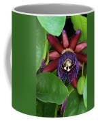Passion Flower Ver. 8 Coffee Mug