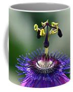 Passion For Purple  Coffee Mug