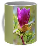 Pastel Spring Coffee Mug