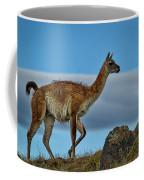 Patagonian Guanaco - Chile Coffee Mug