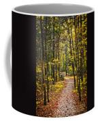 Path In Fall Forest Coffee Mug