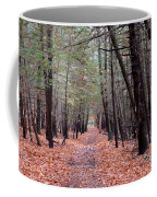 Path In The Woods Coffee Mug