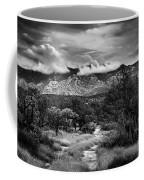 Path Of Contradiction Coffee Mug