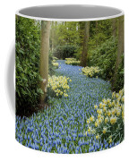 Path Of The Beautiful Spring Flowers Coffee Mug