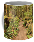 Path Through Mossy Forest Coffee Mug