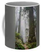 Path Through The Light Coffee Mug