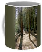 Path Through The Woods. Coffee Mug