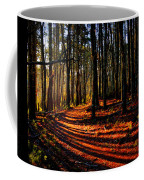 Path To Serenity - Nickerson State Park Coffee Mug