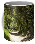 Pathway To Somewhere Coffee Mug