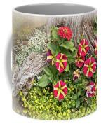 Patio Container Garden Coffee Mug