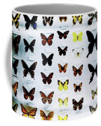 Pattern Made Out Of Many Different Butterfly Species Coffee Mug