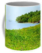 Pavilion Point Coffee Mug