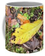 Paw Paw Leaf Fall Colors Coffee Mug