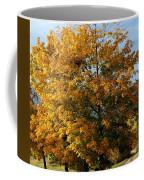 Peaceful Country Road Coffee Mug