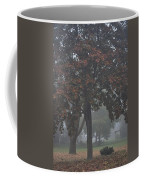 Peaceful Morning Mist Coffee Mug