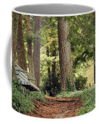 Peaceful Path Coffee Mug