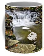 Peaceful Pool Waterfall Coffee Mug