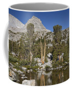 Peaceful Retreat Coffee Mug