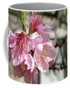 Peach Blossoms Coffee Mug