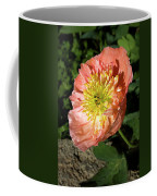 Peach Colored Poppy Coffee Mug
