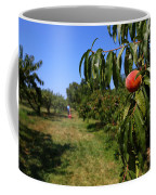 Peach Grove Coffee Mug