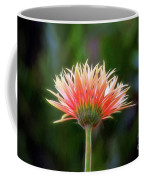 Peach Perfection Coffee Mug