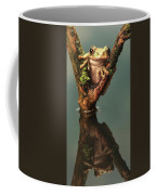 Peacock Frog Coffee Mug