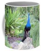 Peacock Landscape Louisiana  Coffee Mug
