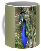 Peacock Mating Season Coffee Mug