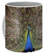 Peacock Plumage Coffee Mug