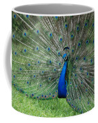 Peacocks Glory Coffee Mug