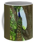 Peacock's Tail Coffee Mug