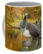 Peahen In Autumn Coffee Mug