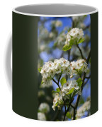 Pear Tree Blossoms Coffee Mug