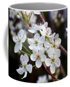 Pear Tree Blossoms II Coffee Mug